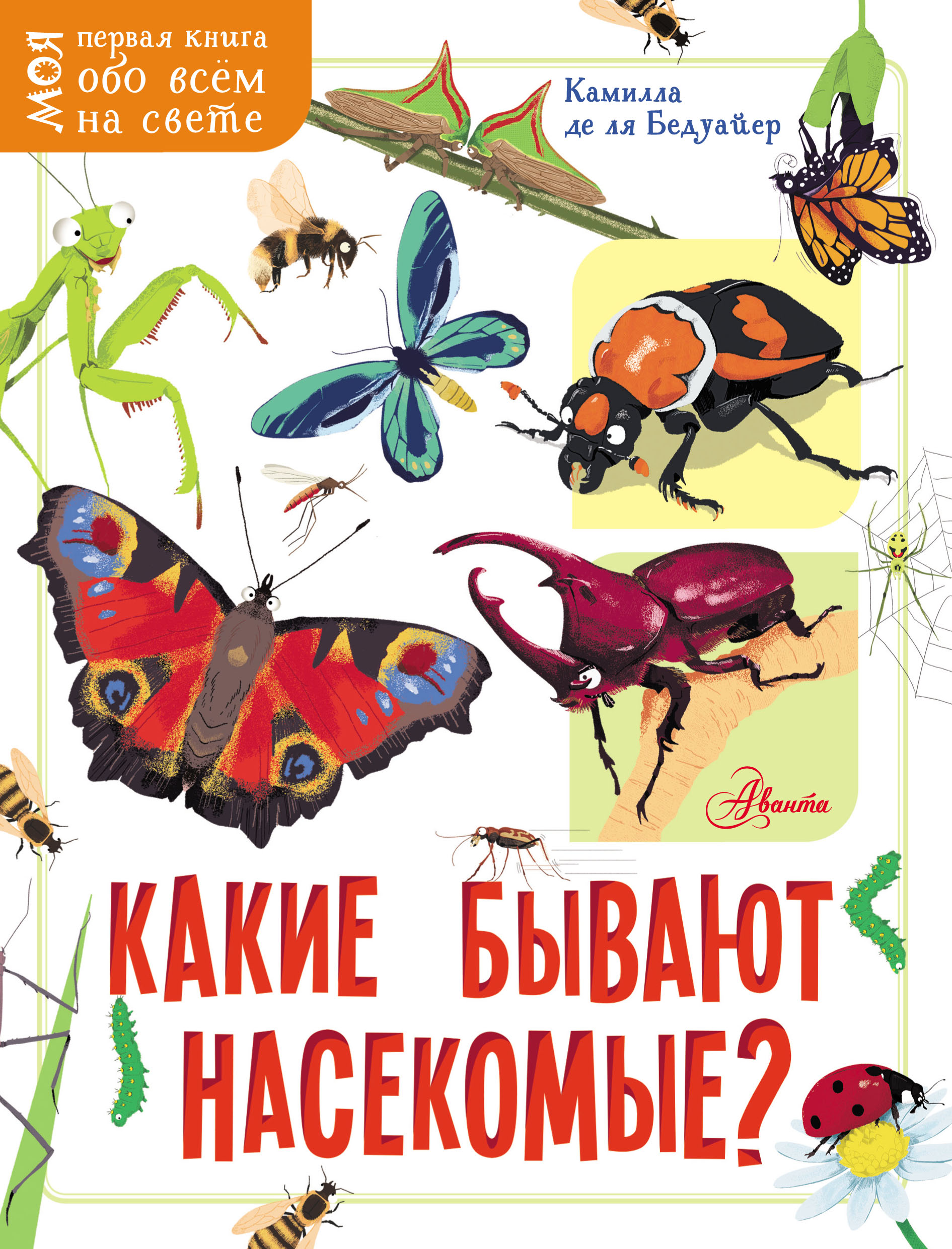 Камилла де ла Бедуайер Какие бывают насекомые?