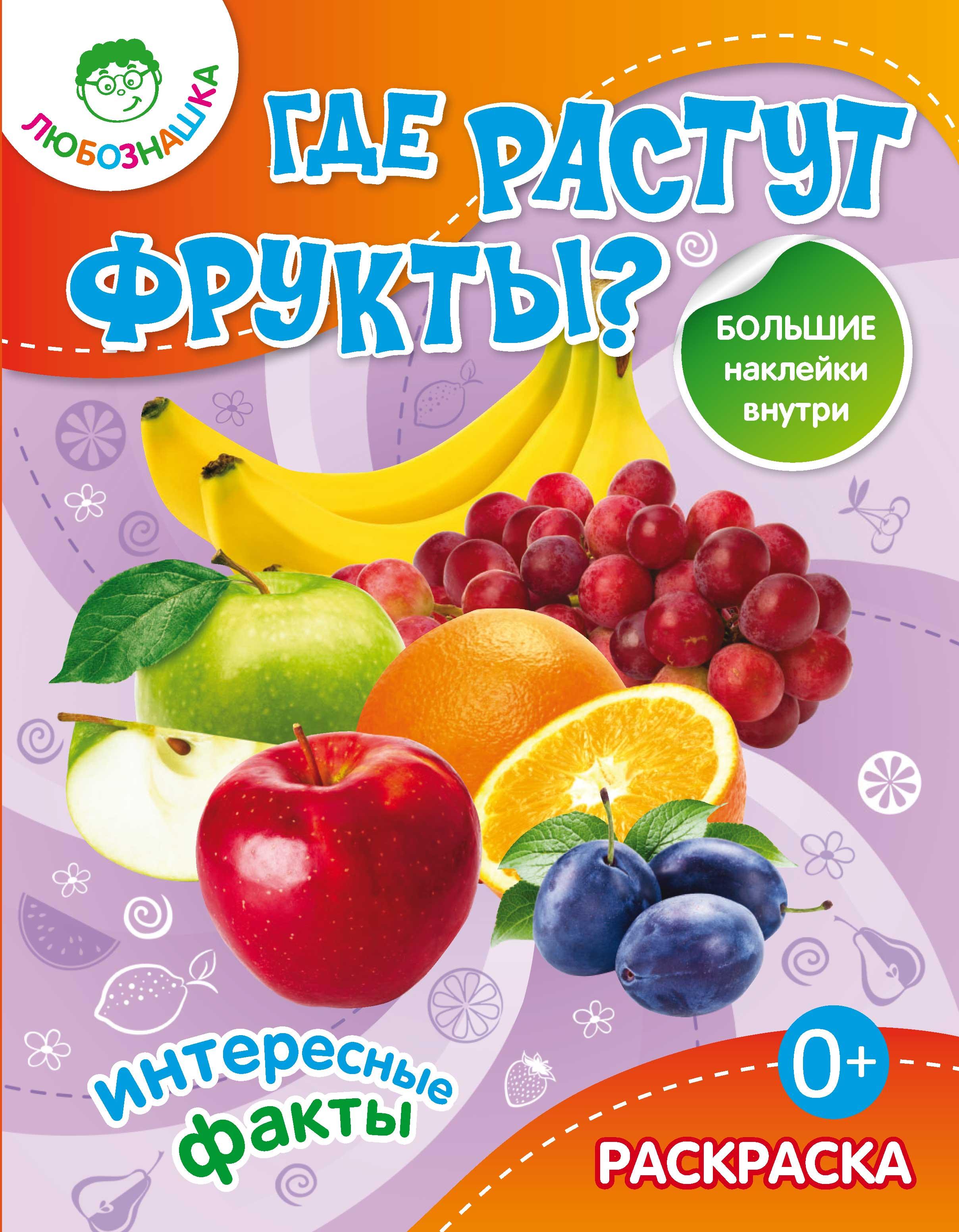 Отсутствует Где растут фрукты? Интересные факты набор для творчества домашняя кухня не растут на елке фрукты фетр
