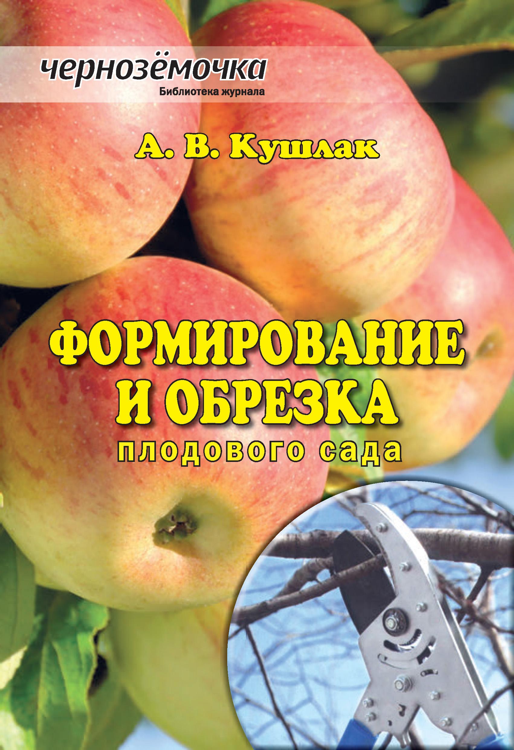 А. В. Кушлак Формирование и обрезка плодового сада плодовые саженцы в волгограде
