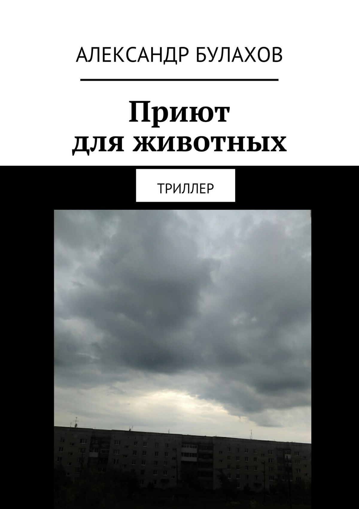 Александр Булахов Приют дляживотных. Триллер александр булахов приют дляживотных триллер