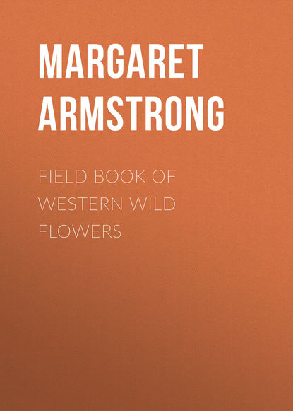 Armstrong Margaret Field Book of Western Wild Flowers margaret wild bogtrotter