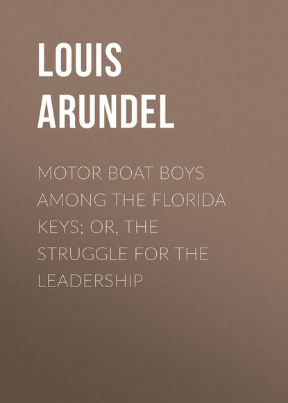 Arundel Louis Motor Boat Boys Among the Florida Keys; Or, The Struggle for the Leadership burma or myanmar the struggle for national identity