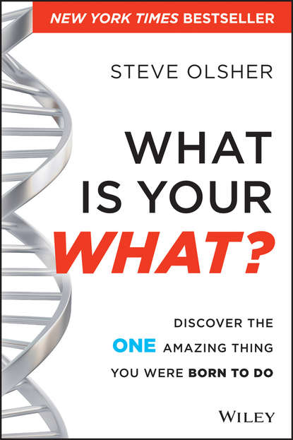 Steve Olsher What Is Your WHAT?. Discover The One Amazing Thing You Were Born To Do a singular life