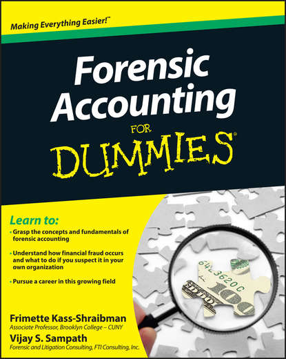 Frimette Kass-Shraibman Forensic Accounting For Dummies john tracy a accounting for dummies