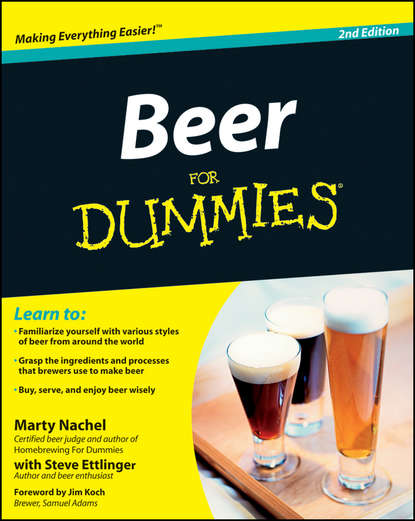 the best selling kn beer maker making machine with 50l water tank 200w on promotions Marty Nachel Beer For Dummies