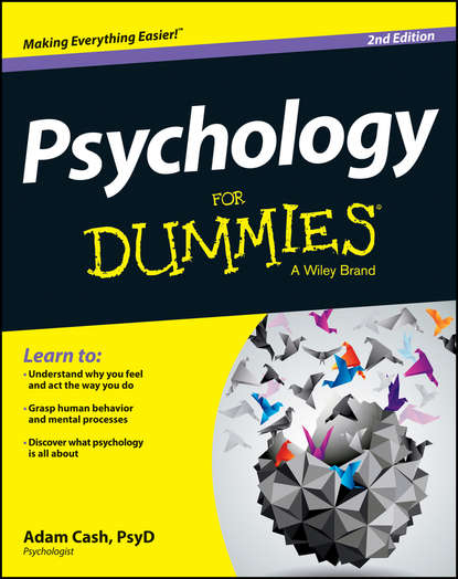 Adam Cash Psychology For Dummies carolina a adaros boye understanding cyberrisks in iot when smart things turn against you