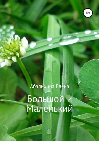 Елена Сергеевна Абалихина Большой и маленький борисова елена сергеевна детство на кораблях