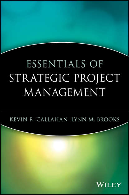 Kevin Callahan R. Essentials of Strategic Project Management dominik hauser multiprojektmanagement im project management office