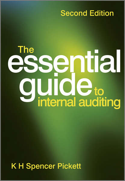 K. H. Spencer Pickett The Essential Guide to Internal Auditing insights into the effectiveness of internal audit