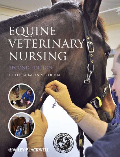 Karen Coumbe Equine Veterinary Nursing john dascanio equine reproductive procedures