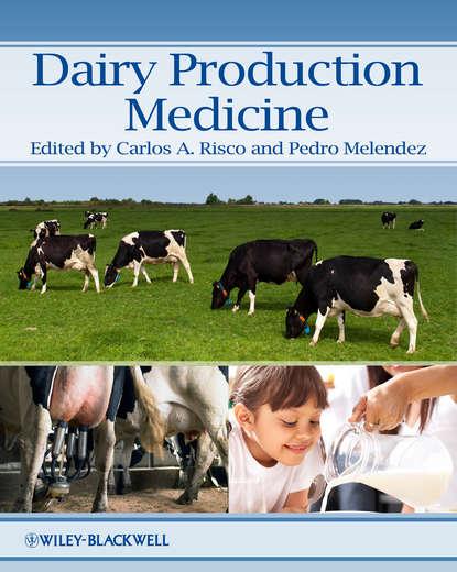 Melendez Pedro Dairy Production Medicine md parvez sazzad chowdhury human resource management in bangladesh