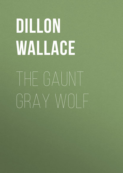 Фото - Dillon Wallace The Gaunt Gray Wolf edgar wallace the gaunt stranger