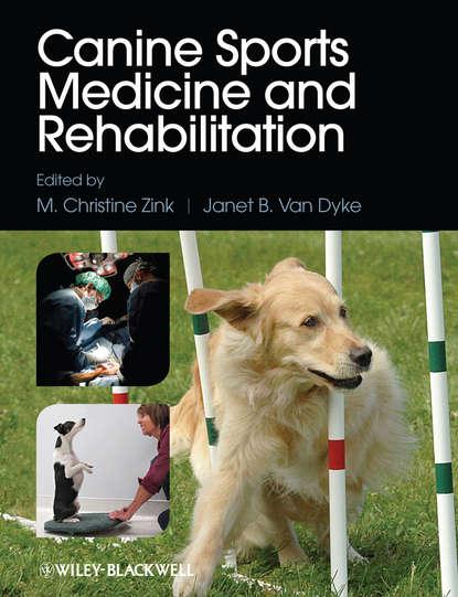 Janet Dyke B.Van Canine Sports Medicine and Rehabilitation use of cowry shells in dental and orthopedic medicine