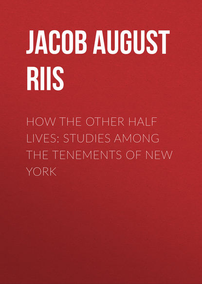 Jacob August Riis How the Other Half Lives: Studies Among the Tenements of New York jacob august riis the making of an american