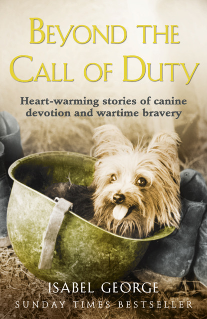 Isabel George Beyond the Call of Duty: Heart-warming stories of canine devotion and bravery isabel george the most decorated dog in history sergeant stubby