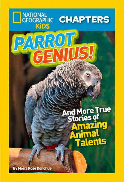 Moira Donohue Rose National Geographic Kids Chapters: Parrot Genius: And More True Stories of Amazing Animal Talents недорого
