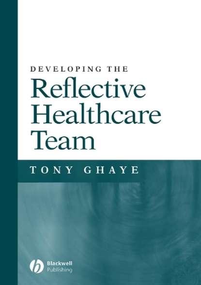 Группа авторов Developing the Reflective Healthcare Team richard c hermann improving mental healthcare