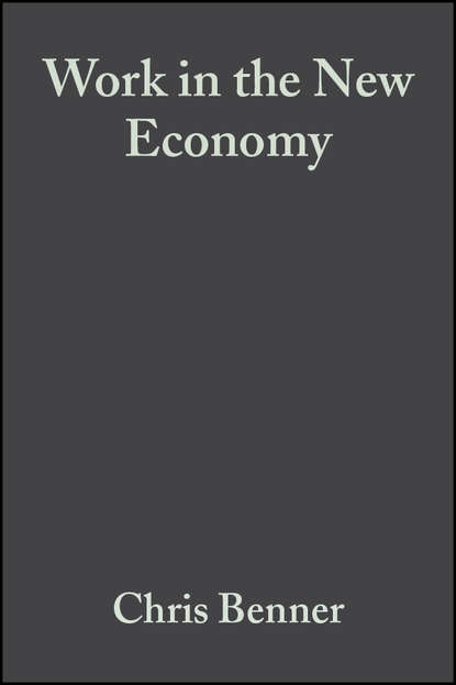 Chris Benner Work in the New Economy labor