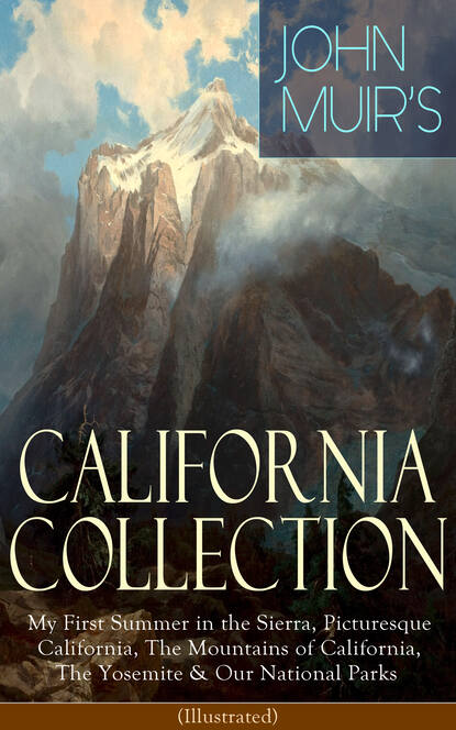 Фото - John Muir JOHN MUIR'S CALIFORNIA COLLECTION: My First Summer in the Sierra, Picturesque California, The Mountains of California, The Yosemite & Our National Parks (Illustrated) 2951s california black