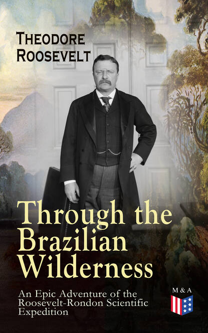 Theodore Roosevelt Through the Brazilian Wilderness - An Epic Adventure of the Roosevelt-Rondon Scientific Expedition henry j hendrix theodore roosevelt s naval diplomacy