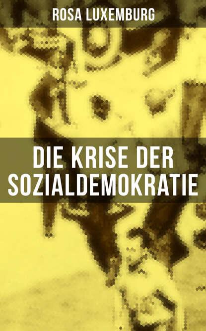 Rosa Luxemburg Die Krise der Sozialdemokratie rosa luxemburg rosa luxemburg zur russischen revolution