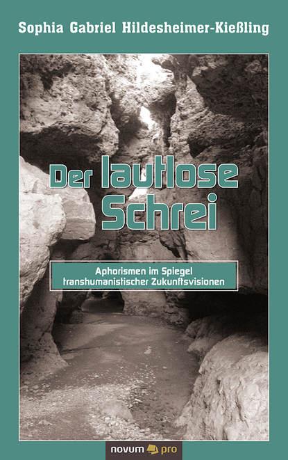 Sophia Gabriel Hildesheimer-Kießling Der lautlose Schrei недорого