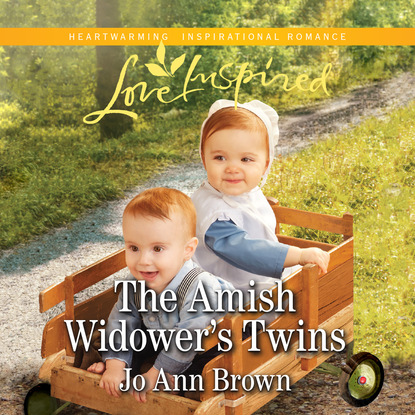 Jo Ann Brown The Amish Widower's Twins - Amish Spinster Club, Book 4 (Unabridged) an amish paradox – diversity and change in the world s largest amish community