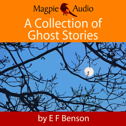 Фото - E. F. Benson A Collection of Ghost Stories (Unabridged) e f benson premium short stories collection blackmailing crank spook
