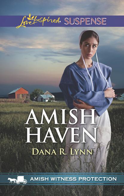 Dana R. Lynn Amish Haven dana r lynn guarding the amish midwife