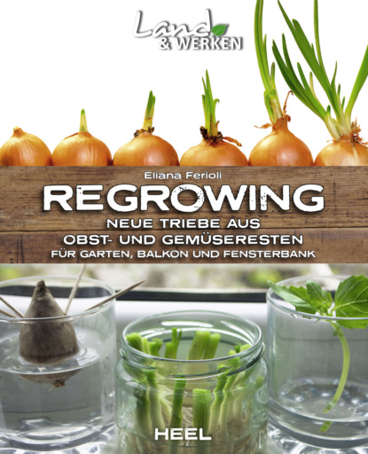 Eliana Ferioli Regrowing eliana ferioli regrowing