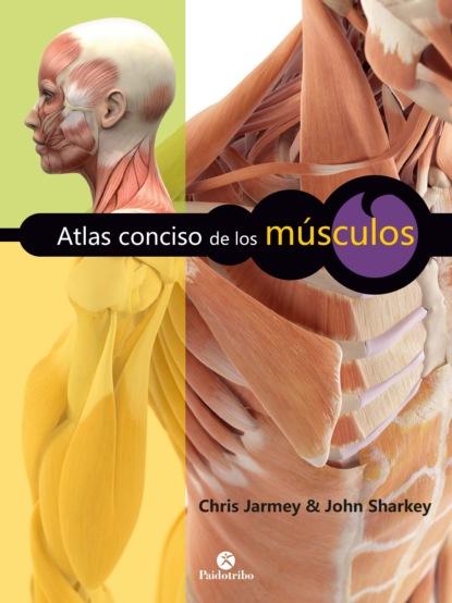 Фото - Chris Jarmey Atlas conciso de los músculos roberto moncayo atlas de ultrasonido en ginecología