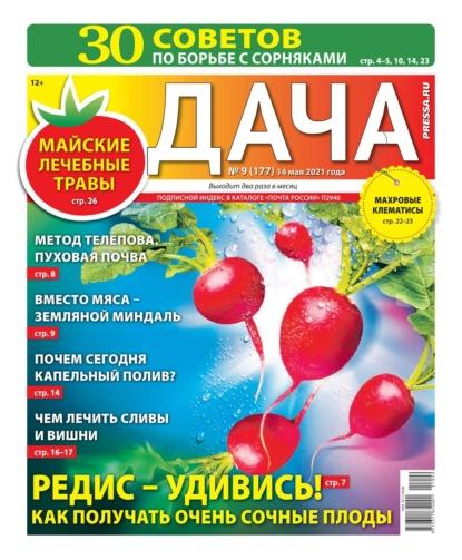 Дача Pressa.ru 09-2021