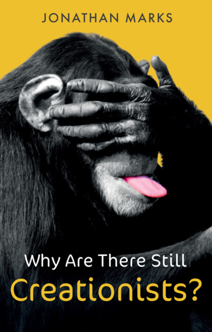 Jonathan Marks Why Are There Still Creationists? shane stay why american soccer isn t there yet