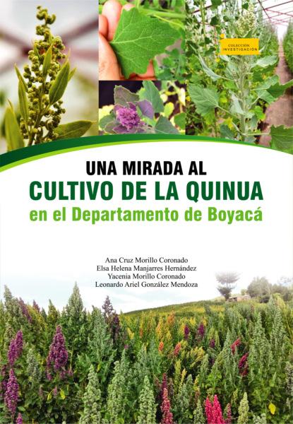 Ana Cruz Morillo Coronado Una mirada al cultivo de la quinua en el departamento de Boyacá ana cruz morillo coronado una mirada al cultivo de la quinua en el departamento de boyacá
