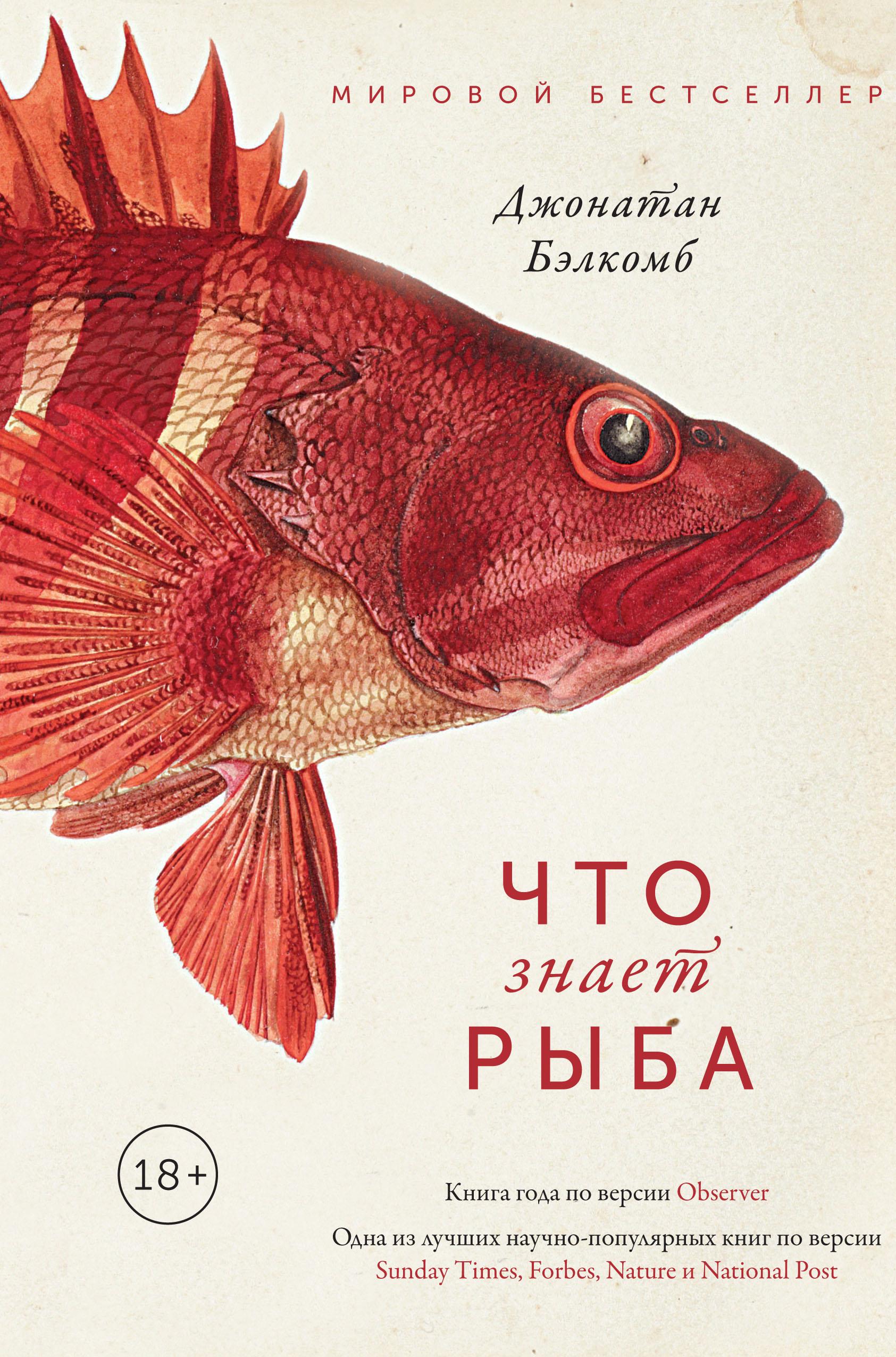 Что знает рыба
