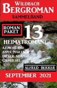 Roman Paket 13 Heimatromane September 2021: Wildbach Bergroman Sammelband