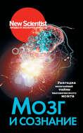 Мозг и сознание. Разгадка величайшей тайны человеческого мозга
