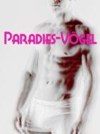 Paradies-Vögel