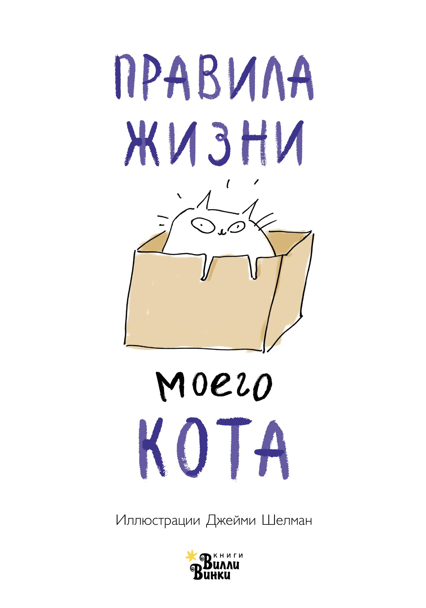 Правила жизни моего кота