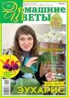 Домашние Цветы 04-2021