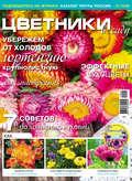 Цветники в саду №01\/2019