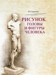 Рисунок головы и фигуры человека