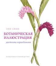 Ботаническая иллюстрация цветными карандашами. Пошаговое руководство