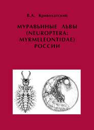 Муравьиные львы (Neuroptera: Myrmeleontidae) России