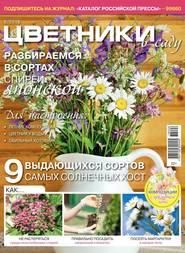 Цветники в Саду 06-2018