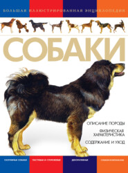 Собаки. Большая иллюстрированная энциклопедия