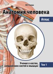 Анатомия человека. Атлас. Том 1. Учение о костях, соединениях костей и мышцах