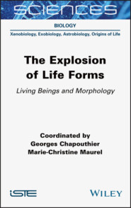 The Explosion of Life Forms