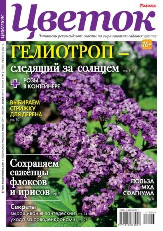 Цветок 03-2021