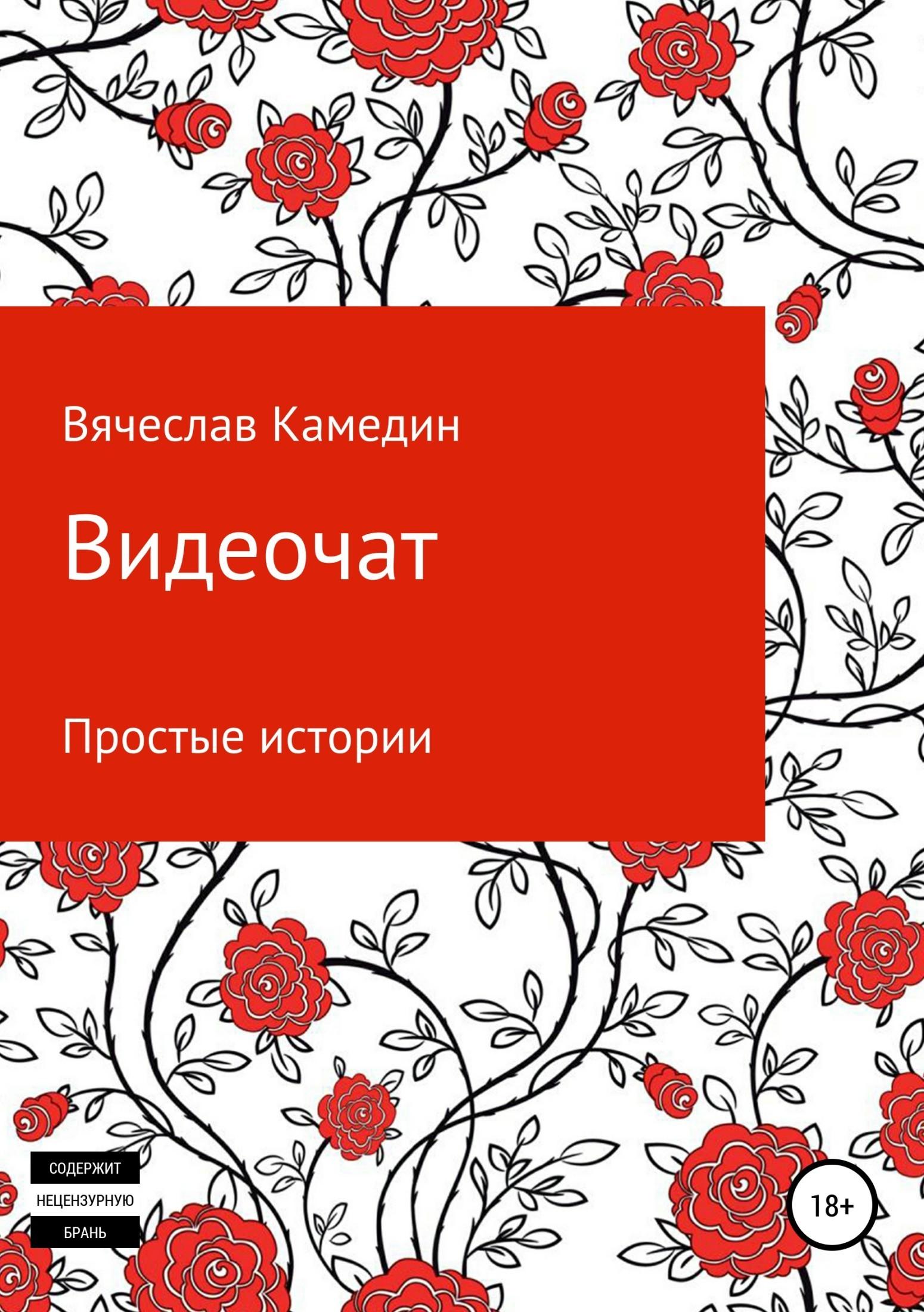Видеочат. Простые истории Вячеслав Камедин